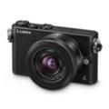 Цифровые фотоаппаратыPanasonic Lumix DMC-GM1 14-42 Kit