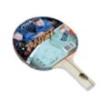 Ракетки для настольного теннисаStiga Twist