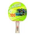 ATEMI 100