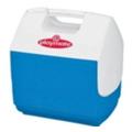 АвтохолодильникиIgloo Playmate PAL Blue 6 (7363)