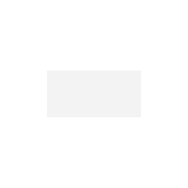 Pamesa Agatha 25x50 blanco