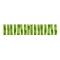 Paradyz Inca 4,8x25 verde