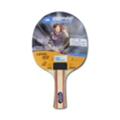 Ракетки для настольного теннисаDONIC Appelgreen 300