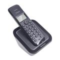 РадиотелефоныRolsen RDT-100
