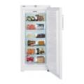 ХолодильникиLiebherr GNP 3166
