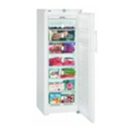ХолодильникиLiebherr GNP 2756
