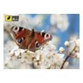 Коврики для мышкиPODMЫSHKU Весна-Бабочка
