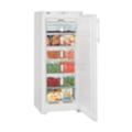 ХолодильникиLiebherr GN 2323