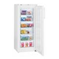 ХолодильникиLiebherr GP 2433