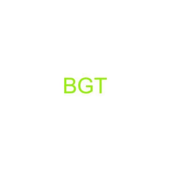 BGT 2820CCD-T2