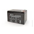 Аккумуляторы для ИБПGemix LP12-12