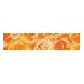 Rako ORCHIDEA oranzova listela 39,8x9 (WLAMC001)