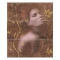 Halcon Look Chocolate D.Allure-1 50x60