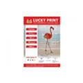 ФотобумагаLucky Print Глянцевая фотобумага (10X15, 180 г/м2), 100 листов