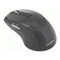 Клавиатуры, мыши, комплектыZalman ZM-M200 Black USB