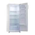 ХолодильникиSnaige C29SM-T10021